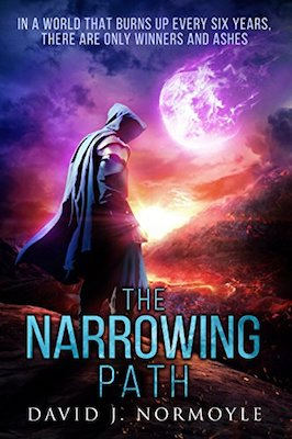The Narrowing Path by David J. Normoyle