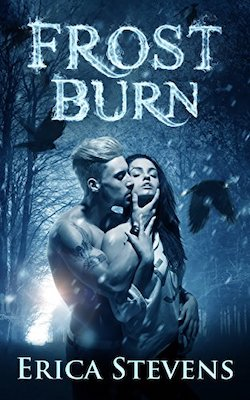 Frost Burn by Erica Stevens
