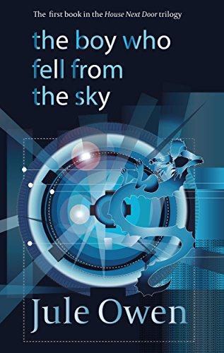 The Boy Who Fell from the Sky by Jule Owen