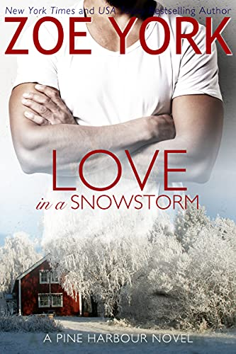 Love in a Snowstorm by Zoe York