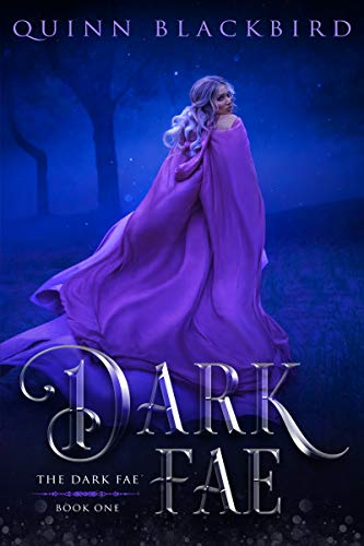 Dark Fae by Quinn Blackbird
